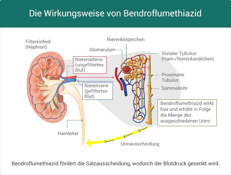 Wirkungsweise von Bendroflumethiazid