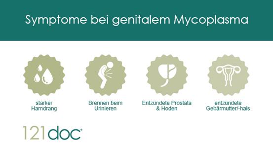 symptome_gen_mycoplasma