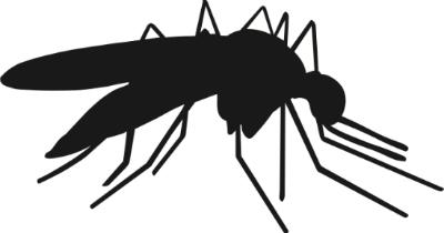 silhuet i sort og hvid af en malariamyg